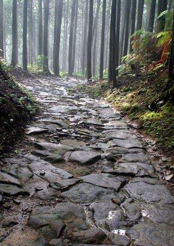 熊野古道中辺路より大日峠トレッキング