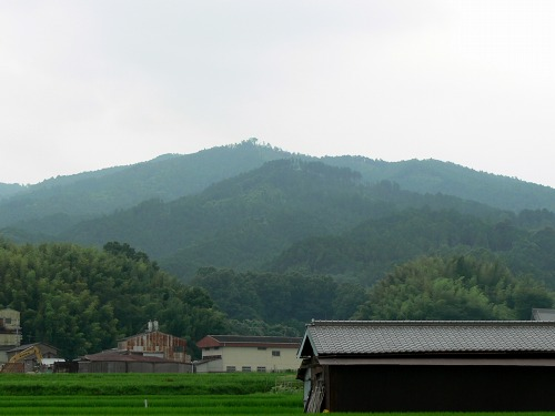 明日香村 藤本山